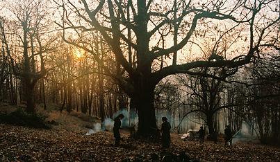 Historias del bosque de castanos_still1.