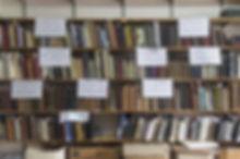 Fotosonda1-b-1.jpg