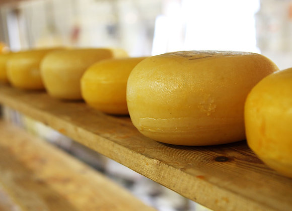 Сыроварня | производство сыра | финансовая модель бизнес плана