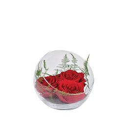 roses-eternnelles.jpg