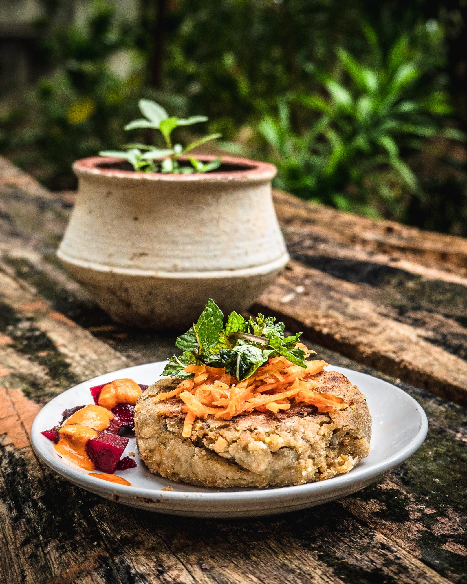 Shakti Ashram Vegan Meal9