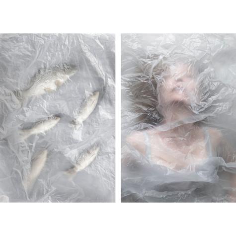 fish-4.jpg