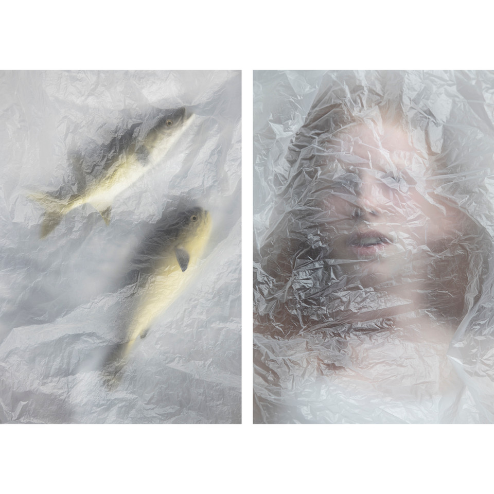 fish-7.jpg