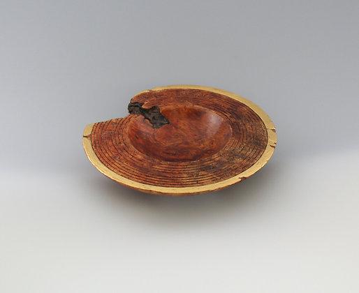 Big Leaf Maple Burl Vessel, 24 k. Gold Foil