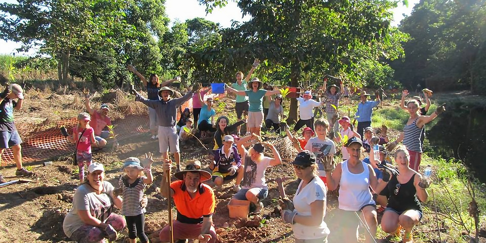 Treeforce Tree Planting 400 trees for Cassowaries!