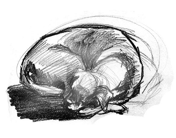 Tegning med fremhevet kontur