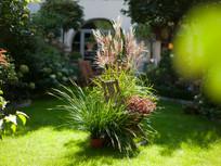 13a Garten Stuhl-2 gr.jpg