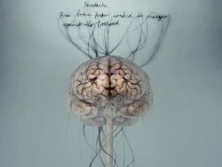 Jak různé typy meditací mění různě lidský mozek