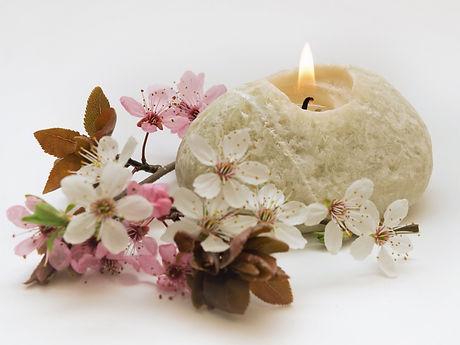 flowers-4948271_1920_edited_edited.jpg