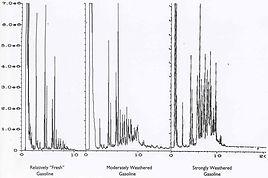 Forensic Hydrocarbon Fingerprinting