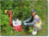 First Nations environmental consultants