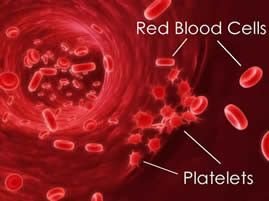 The Phenomenal Power of Platelets