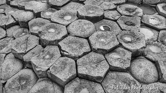 Giant's Causeway 7 B&W_wm.jpg