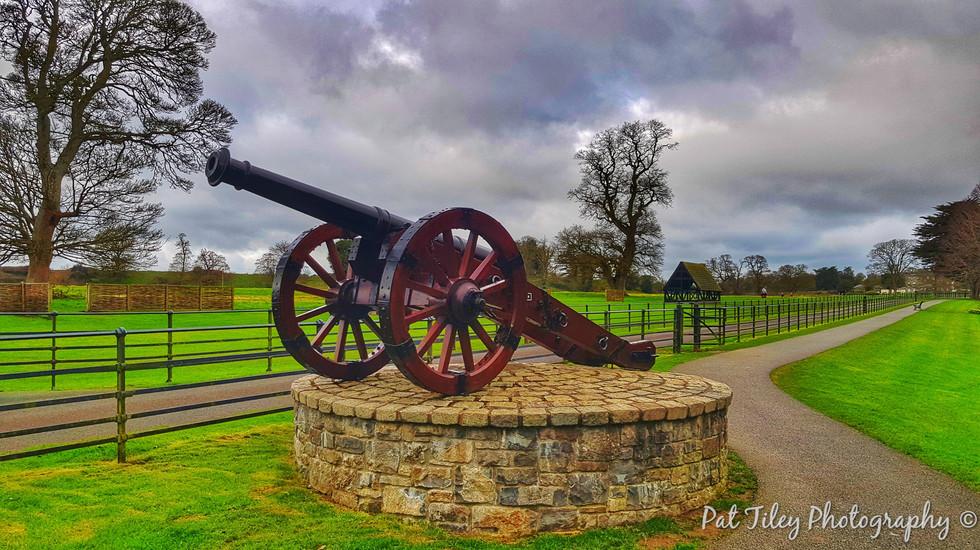 Field cannon - The Battle of the Boyne_w