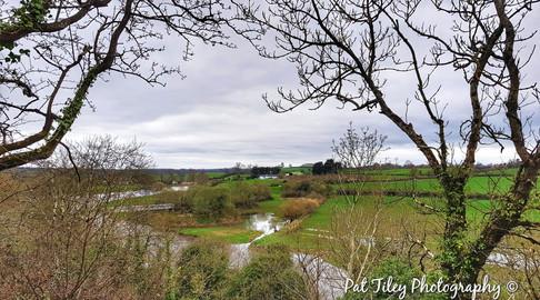 Irish Countryside_wm.jpg