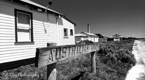 Shoreline Sign_wm.jpg