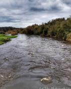 Fast Flowing - The River Boyne_wm.jpg