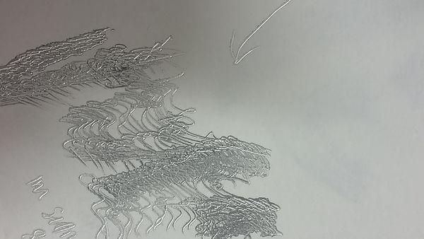 Comp 1 (0-01-04-02).jpg