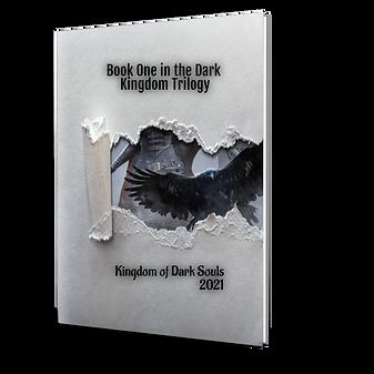 BookBrushImage-2021-1-19-16-2122.png