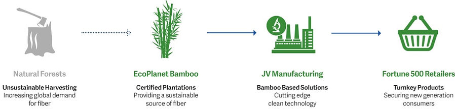 EcoPlanet Bamboo Supply Chain.jpg