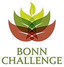 Bonn Challenge EcoPlanet Bamboo.jpg
