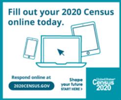 census20202.bmp