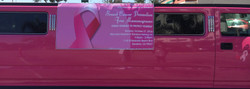 Breast Cancer Mobile