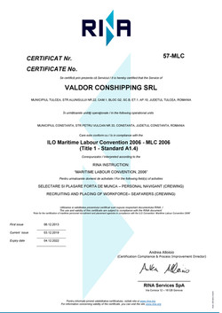 MLC 2006 Certificate