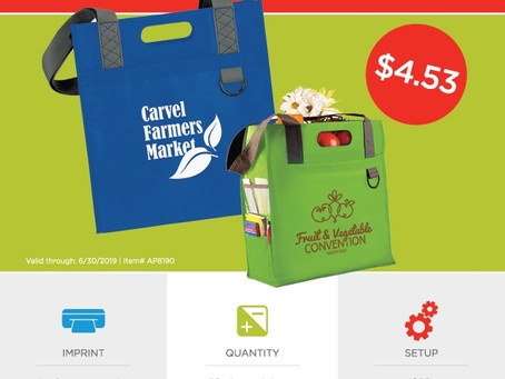 Weekly Special ~ Dual Carry Tote