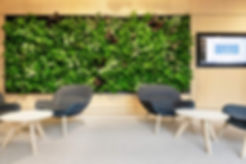 Interieur plantenwand