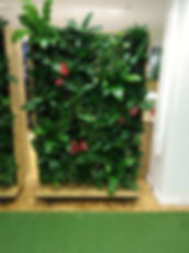 mobiele plantenwand