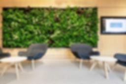 nextgen-living-wall-221.jpg