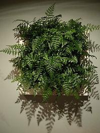 plantenschilderij