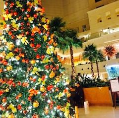 南国宮崎にも12月になればクリスマスがやってきますね!