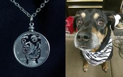 dog picture - bandanna