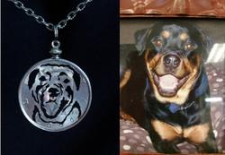 dog pic - Rot smiling