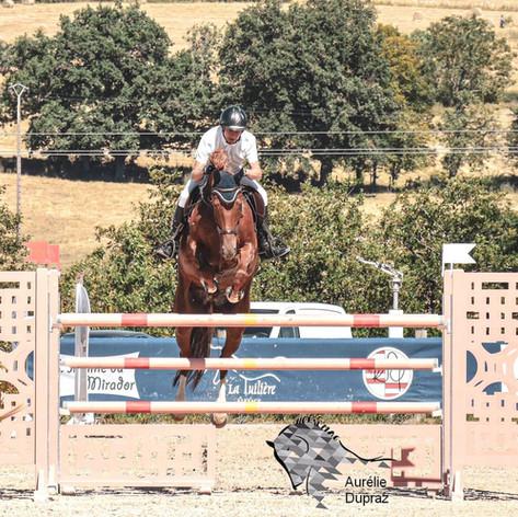 Arley de Vayrie (Padock X Quite Easy) CSIO Suisse