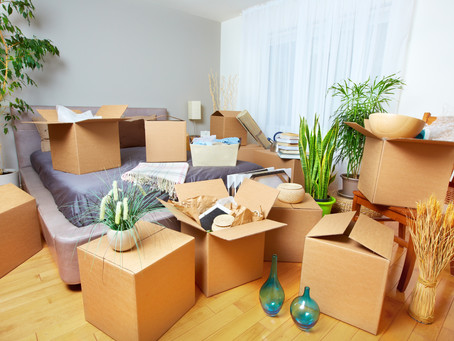 Why Hire Professional Packers?