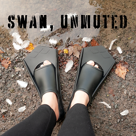 Swan Unmuted SQUARE Teaser Image 001.png