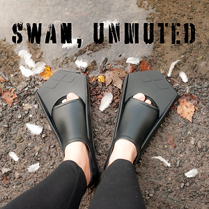 Swan Unmuted Teaser Image SQ