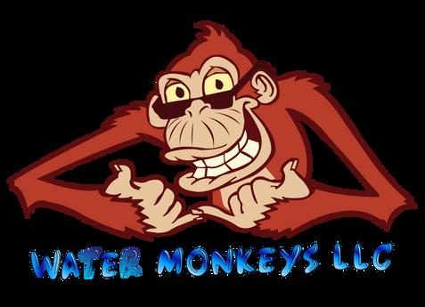 monkey-02.png