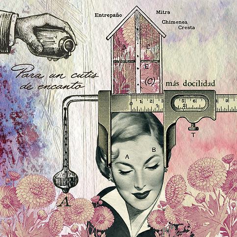 Ilustración, Decoracion, Colagge art, Cuadros, wallart