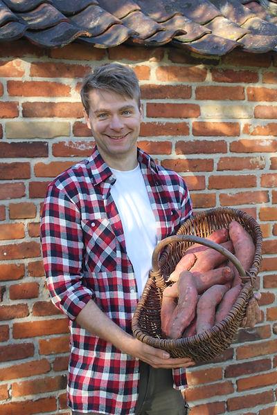 Sönkes Süßkartoffel aus der Lüneburger Heide Bad Bevensen Regional Ökologisch Biologisch, Bio, Strampe