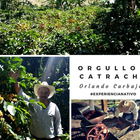 Productor: Orlando Carbajal