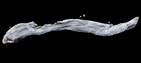 ES - ALULA - CANYON RESORT - MODEL.png