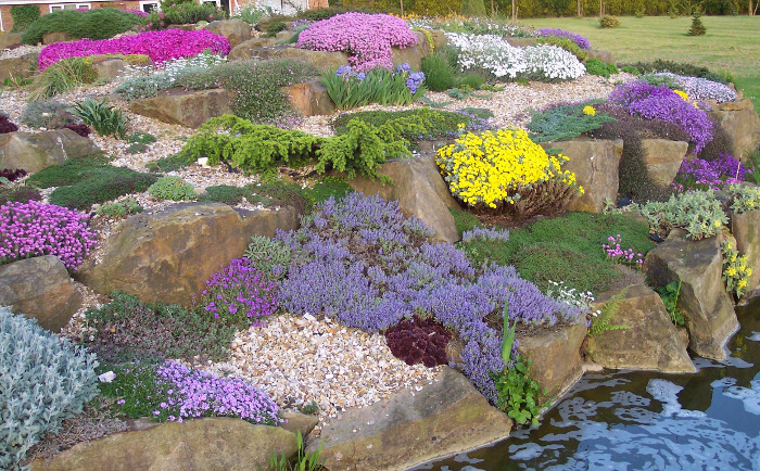 Rockery at nursery