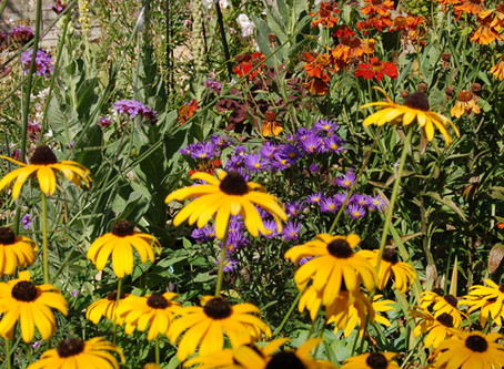 The Horti's Gardening Calendar - September