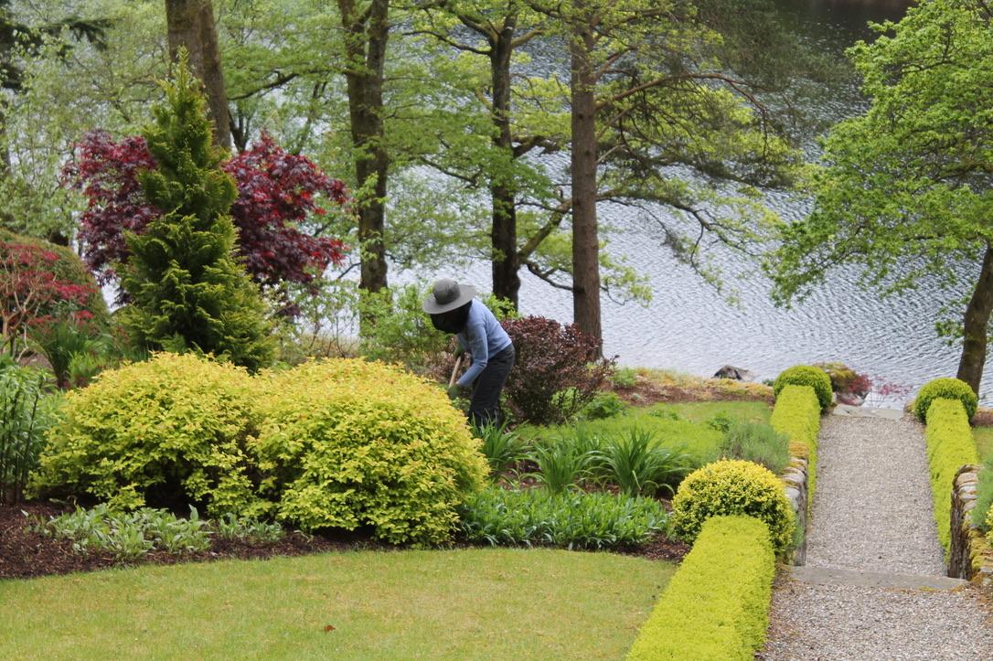Midgie net is an essential piece of gardening kit on Loch Ard