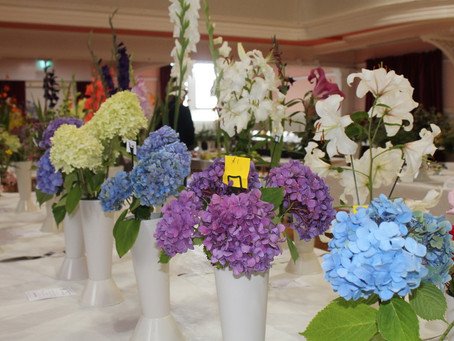 168th Annual Flower and Vegetable Show Results