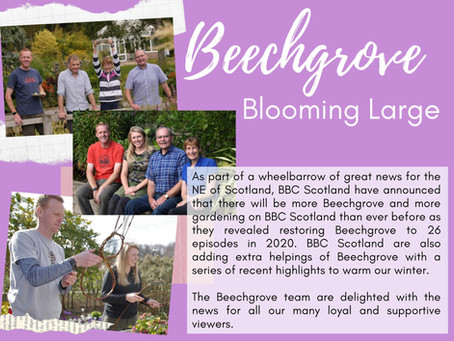 Beechgrove - great news for 2020